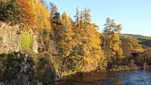 Autumn Break Scottish Highlands